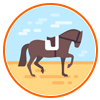 Horses Equestrians