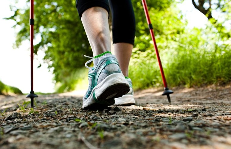 Induce The Process Of Weight Loss Through Pole Walking