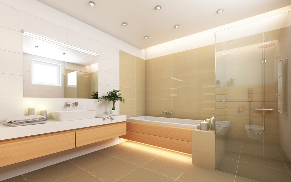 All You Need To Know About The Shower Rails