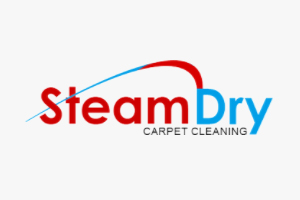 Steam Dry Carpet Cleaning