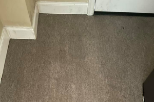 Carpet Cleaning Dunlop