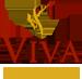 Viva Esthetique - best Cosmetic Surgeons in delhi