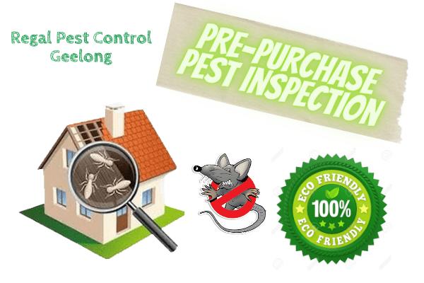 Regal Pest Control Melbourne