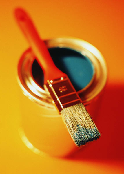 ANZ Painting Services