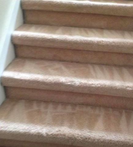 Carpet Cleaning Oconnor