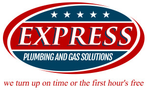 Express Plumbing And Gas Solutions