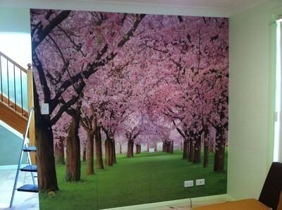 sydney wallpaper installation