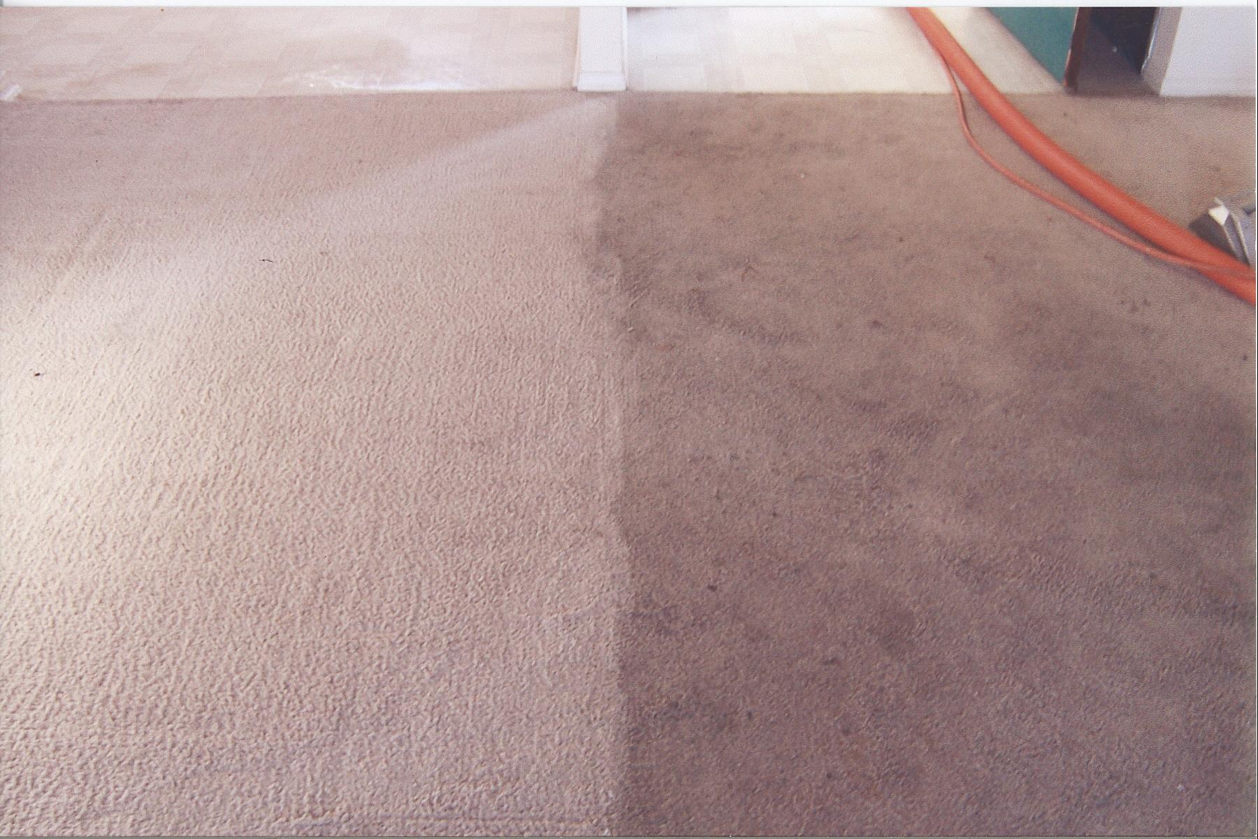 Carpet Steam Cleaning Wallan- 0415 814 480