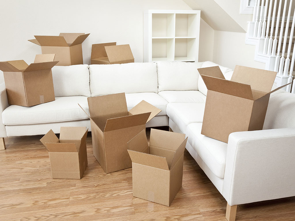 Importance of Professional Removalists